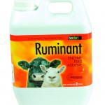 BioStart RUMINANT 2L