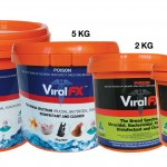 ViralFX-Group-(low-res)